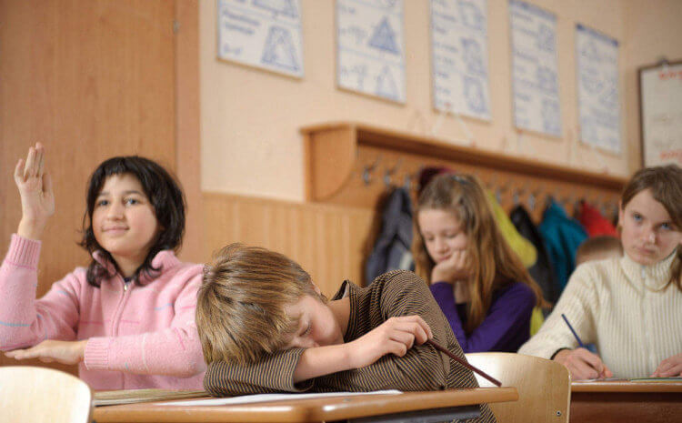 Заснувший в классе