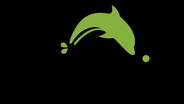 Dolphin Browser — один из лучших