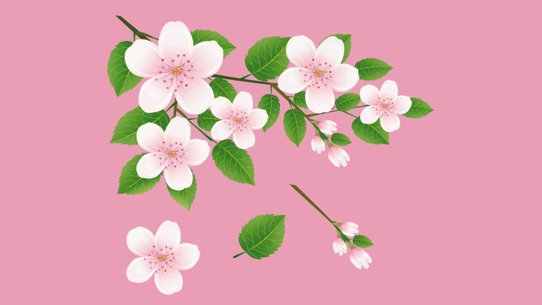 Цветущая весной древесная ветвь