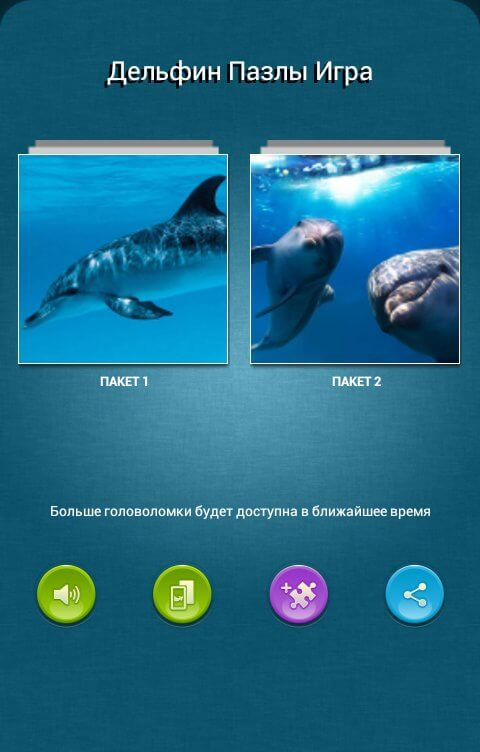 Dolphins Jigsaw Puzzle