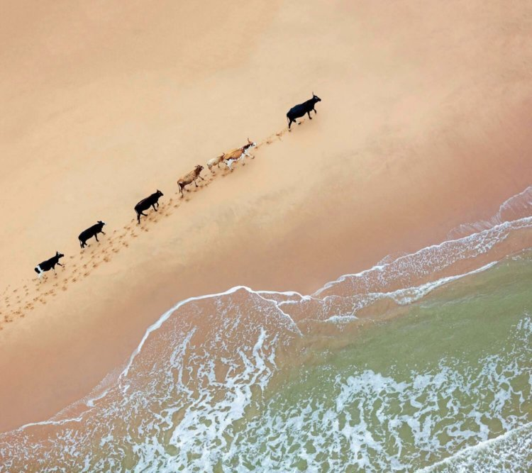 On a journey, South Africa