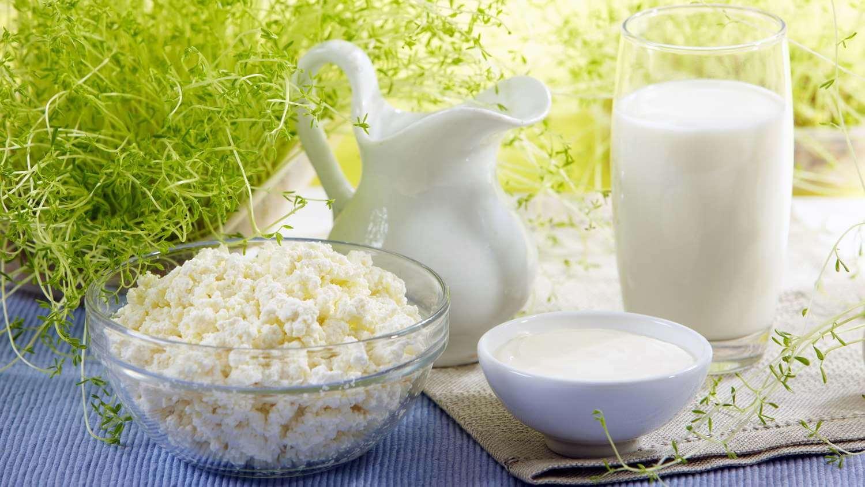 Творог и молочные продукты