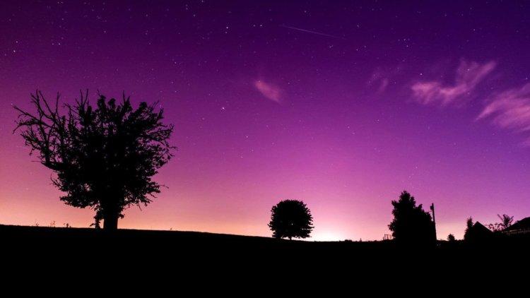 Night Purple