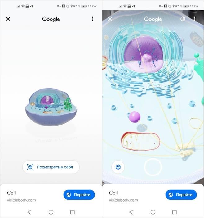 ما هو غير الحيوانات يمكن مشاهدته في 3D على جوجل 3