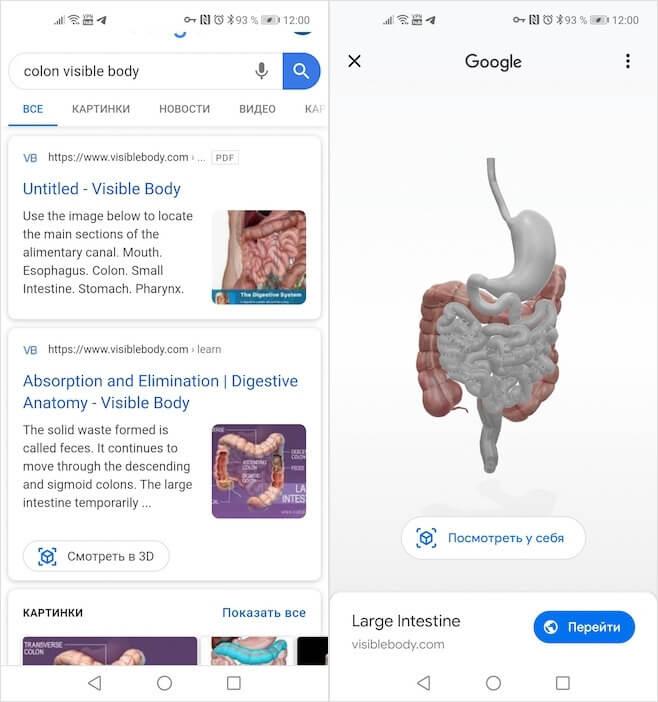 ما هو غير الحيوانات يمكن مشاهدته في 3D على جوجل 2