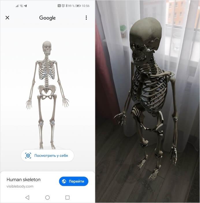 ما هو غير الحيوانات يمكن مشاهدته في 3D على جوجل 1