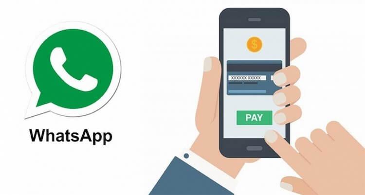 تطلق WhatsApp خدمة الدفع الخاصة بها. أين يمكنني استخدامه؟ 1