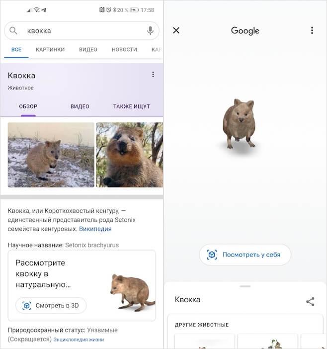 AR-животные Google