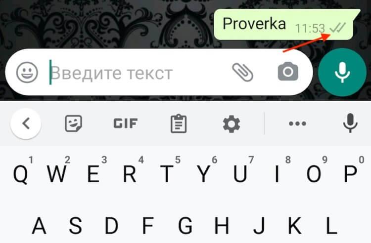 Что означают галочки в WhatsApp