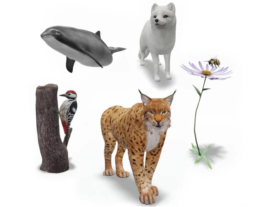 Животные Гугл